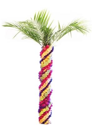 Фруктовая пальма большая