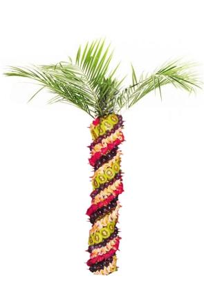 Фруктовая пальма средняя
