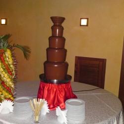 шоколадный-фонтан-киев (18)