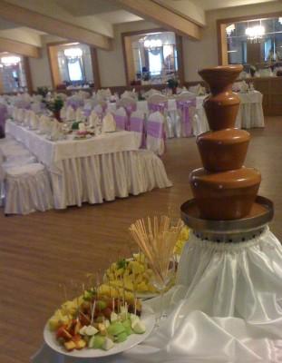 шоколадный-фонтан-киев (2)