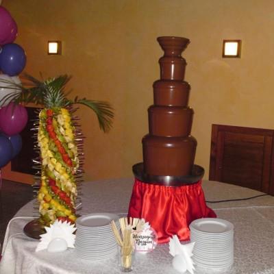 шоколадный-фонтан-киев (44)