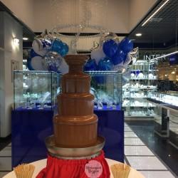 шоколадный-фонтан-киев (47)