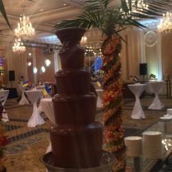 шоколадный-фонтан-киев (24)