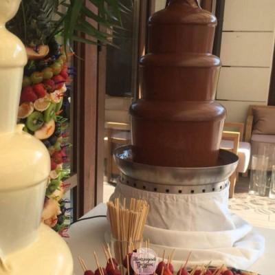 шоколадный-фонтан-киев (48)