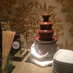 шоколадный-фонтан-киев (49)