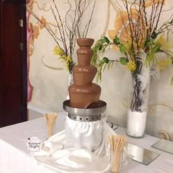 шоколадный-праздник (10)