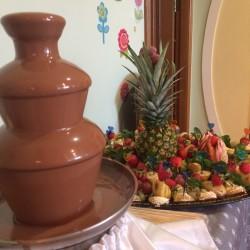 shokoladnyj-fontan-kyiv (855)