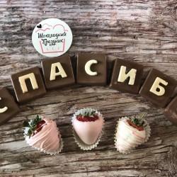 shokoladnye-bukvy-kyiv  (20)